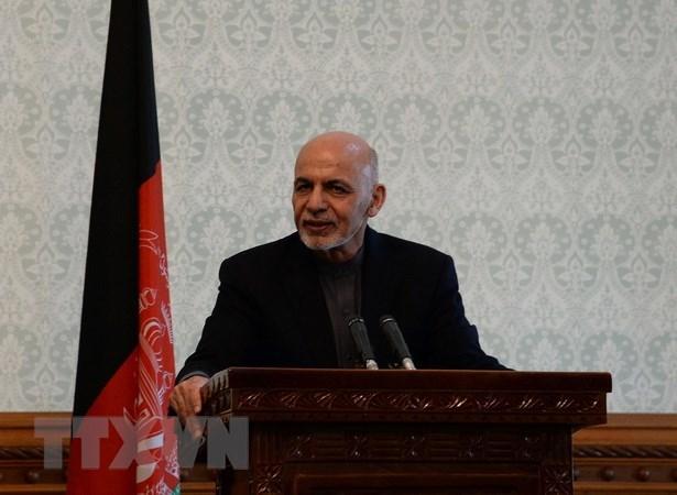 Pakistan cam ket hop tac trong tien trinh hoa binh o Afghanistan hinh anh 1