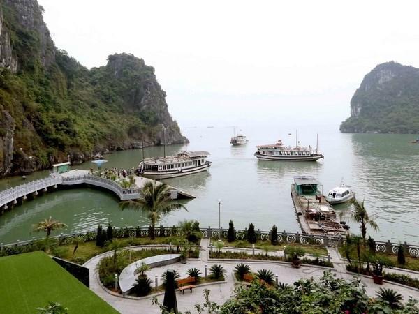 Quang Ninh: Khong co chuyen xe nui va betong hoa dao Soi Sim hinh anh 1