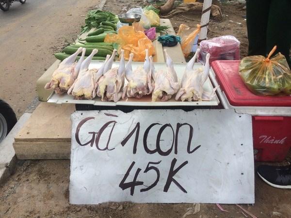 "Thanh pho Ho Chi Minh: Can co giai phap kiem soat ga ""sieu re"" hinh anh 1"