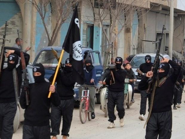 Syria: Nhom IS bat coc gan 40 phu nu va tre em o mien Nam hinh anh 1