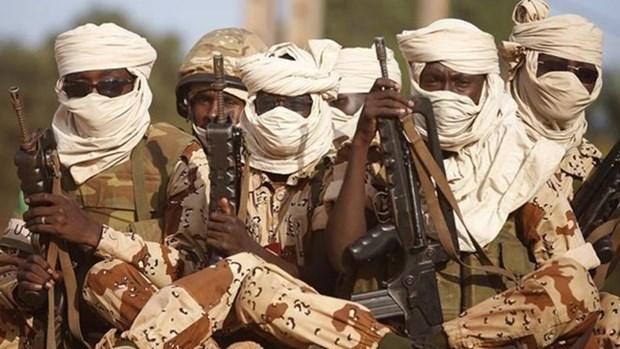 Nigeria: Boko Haram tan cong, sat hai nhieu dan thuong hinh anh 1