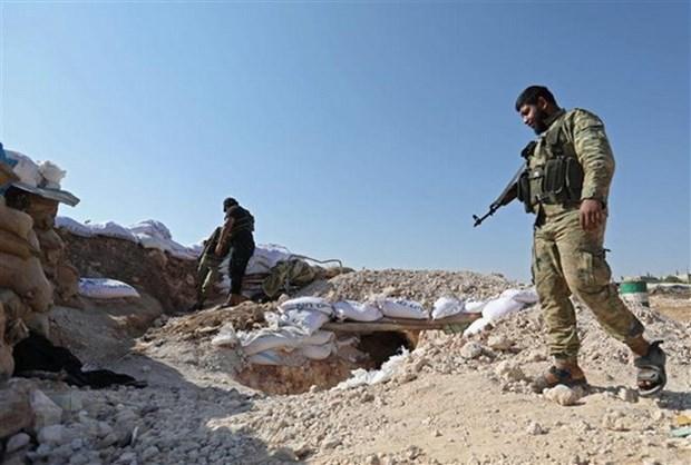 Chuyen gia Nga: Idlib la cai gai can nho bo cang som cang tot hinh anh 1