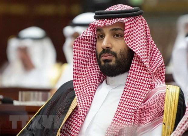 Saudi Arabia lap 3 co quan nham cai thien cac hoat dong tinh bao hinh anh 1