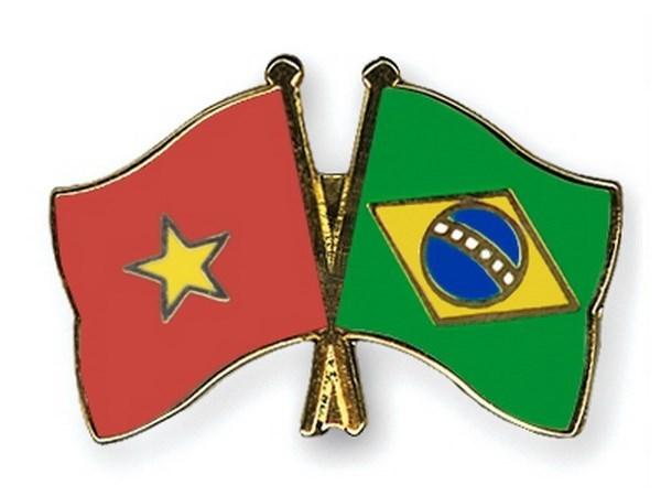 Brazil se cung Viet Nam no luc that chat hon nua quan he song phuong hinh anh 1