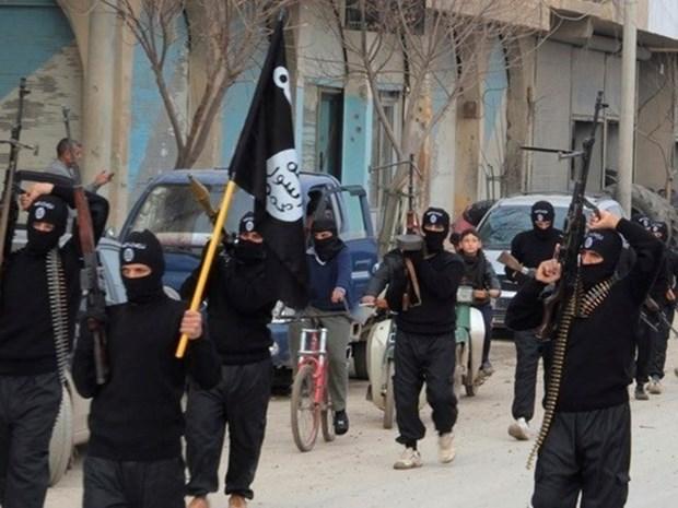 Nga: Nhom Nha nuoc Hoi giao IS dang troi day manh me o Libya hinh anh 1