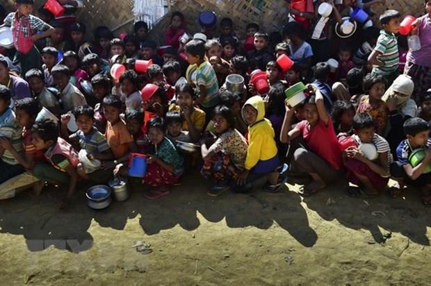 LHQ ho tro Myanmar tang an ninh luong thuc va quan ly tai nguyen hinh anh 1