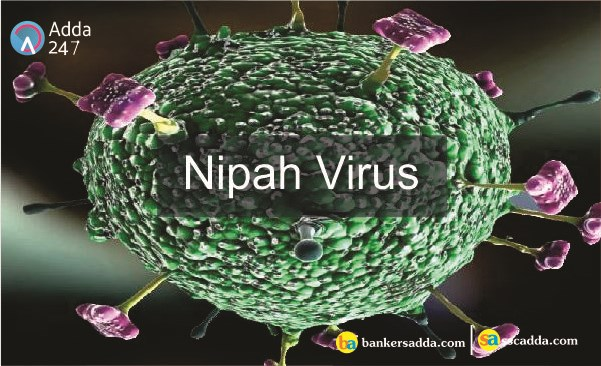 Day nhanh nghien cuu vacxin ngua virus Nipah gay ton thuong nao bo hinh anh 1