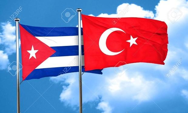 Cuba va Tho Nhi Ky thuc day hop tac kinh te song phuong hinh anh 1