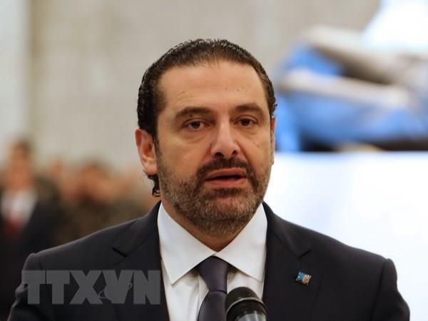 Thu tuong Liban Saad Hariri keu goi ngung tranh cai chinh tri hinh anh 1