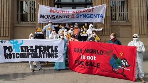 Monsanto bi cao buoc chi phoi gioi khoa hoc va co quan quan ly hinh anh 1