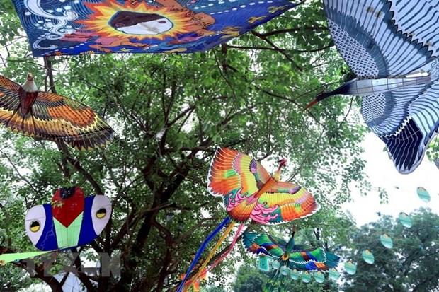 Festival Nghe truyen thong Hue 2019 ton vinh Tinh hoa nghe Viet hinh anh 1