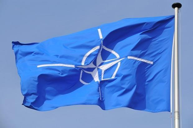 Nghi sy Duc keu goi giai the NATO do lo ngai de doa an ninh the gioi hinh anh 1