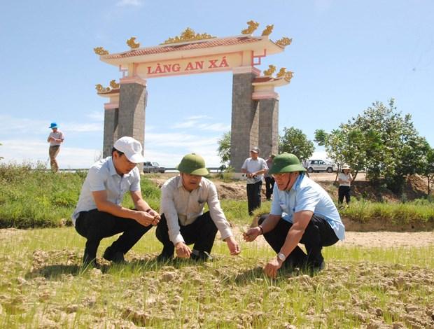 Quang Tri trien khai cac phuong an chong han khan cap hinh anh 2