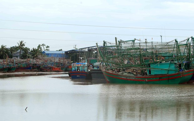 Ung pho bao: Quang Ninh tam ngung cap phep phuong tien thuy ra khoi hinh anh 1