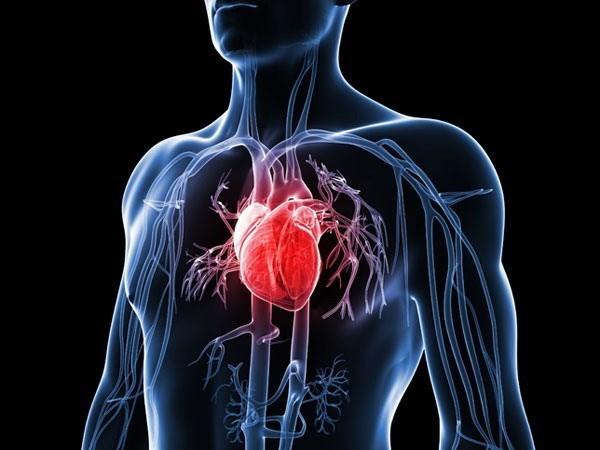 Dieu tri som cholesterol cao giup ngan chan nguy co benh tim, dot quy hinh anh 1