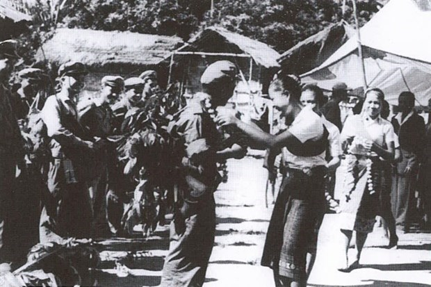 Bo doi tinh nguyen Viet Nam hoan thanh xuat sac giup do cach mang Lao hinh anh 2