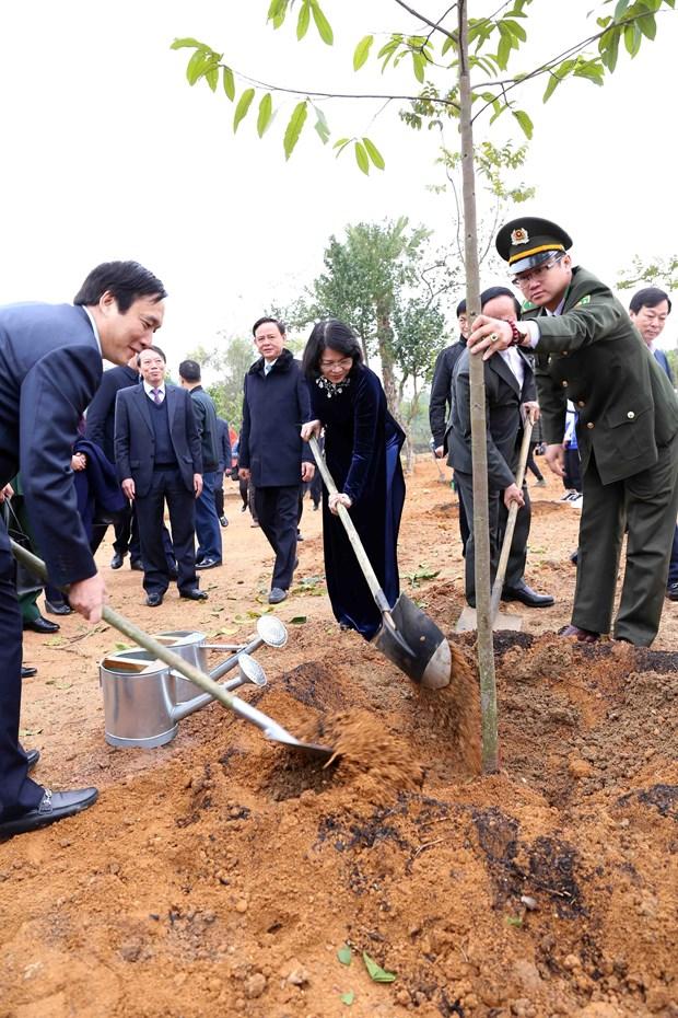 Pho Chu tich nuoc Dang Thi Ngoc Thinh phat dong Tet trong cay hinh anh 2