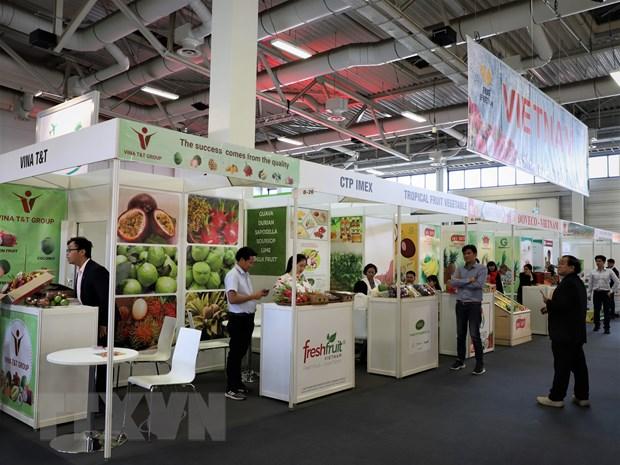 Cac doanh nghiep rau qua Viet Nam tham gia Fruit Logistica 2020 hinh anh 1