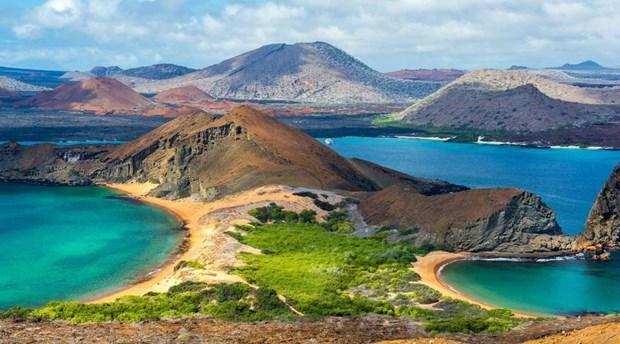 Ecuador phat hien 30 loai dong vat khong xuong song moi o Galapagos hinh anh 1