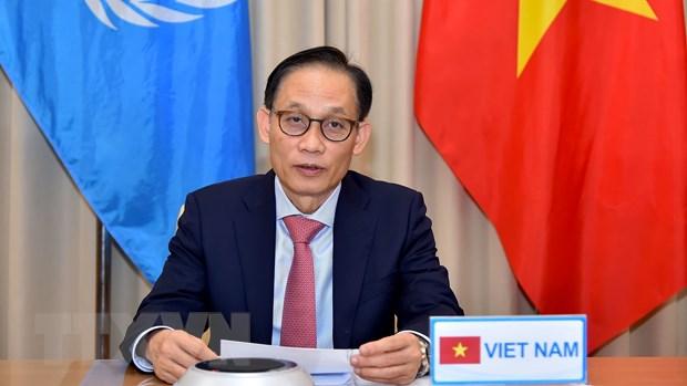 Viet Nam du Phien thao luan truc tuyen Cap cao Hoi dong Bao an LHQ hinh anh 1