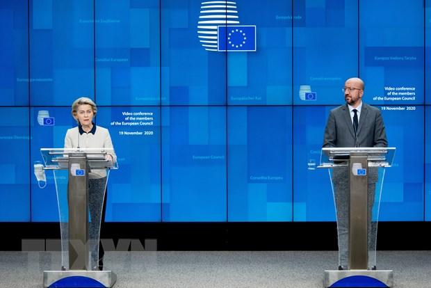 EU keu goi G20 thuc day ke hoach huong toi tuong lai ben vung hon hinh anh 1