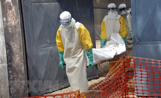 Dich benh Ebola quay tro lai khu vuc Tay Phi sau 5 nam vang bong hinh anh 1