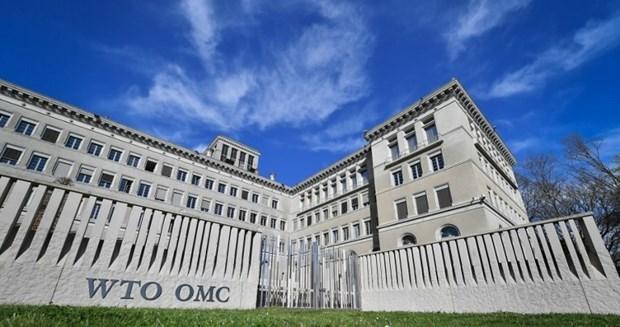 Hoi nghi Bo truong WTO lan thu 12 se duoc to chuc cuoi thang 11/2021 hinh anh 1