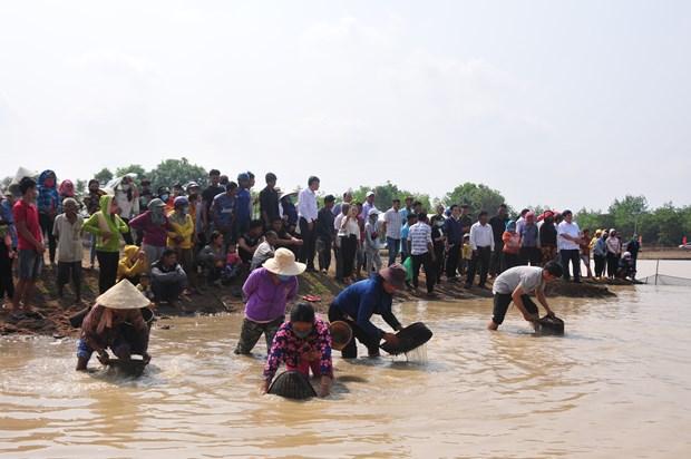 Pha Bau - Le hoi dien xuong doc dao dam chat van hoa Khmer hinh anh 3