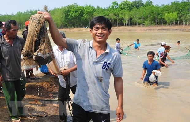 Pha Bau - Le hoi dien xuong doc dao dam chat van hoa Khmer hinh anh 4