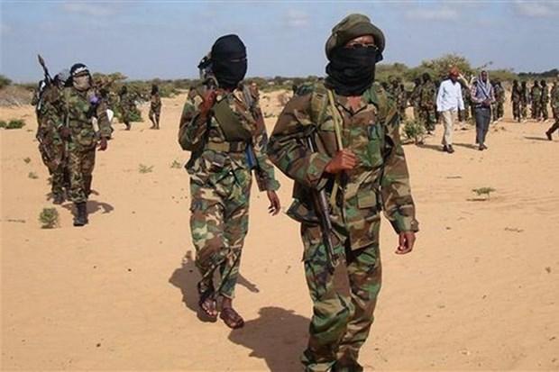 Somalia tieu diet hang chuc phien quan cua nhom al-Shabab hinh anh 1