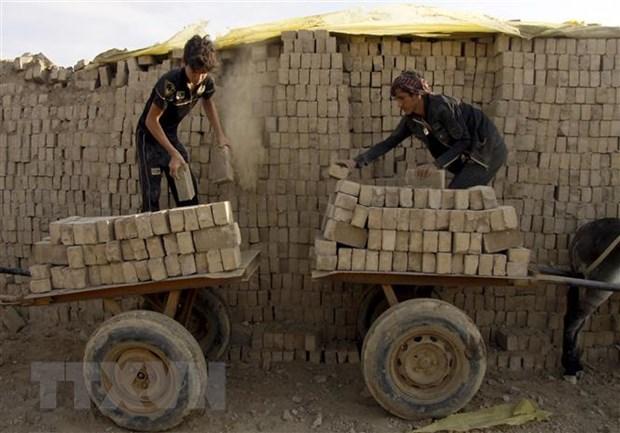 ILO va UNICEF canh bao co them 9 trieu tre bi anh huong COVID-19 hinh anh 1