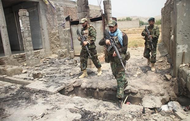 Afghanistan day lui cuoc tan cong cua Taliban o ngoai o Herat hinh anh 1
