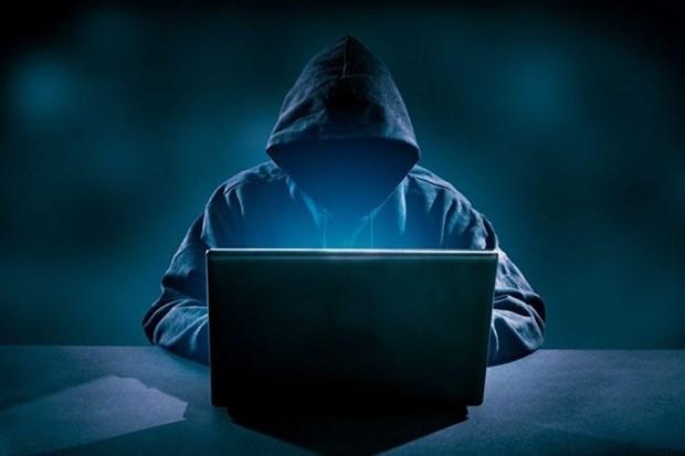 Lo hacker 'quay nhieu' dip Tet, nha chuc trach len tieng canh bao hinh anh 1