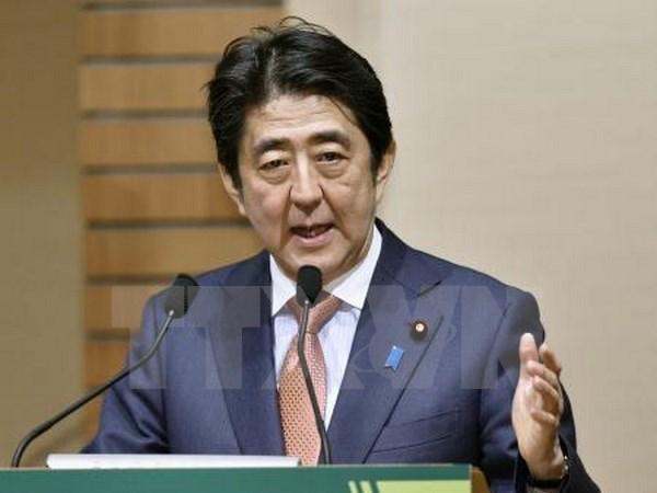 Nhat Ban: Ty le ung ho Thu tuong Shinzo Abe tang tro lai hinh anh 1