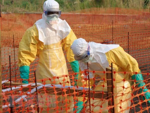 WHO danh gia nguy co lay nhiem Ebola o Viet Nam rat thap hinh anh 2