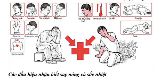 2 nguoi tu vong do soc nhiet, cach bao ve suc khoe khi troi nong? hinh anh 3