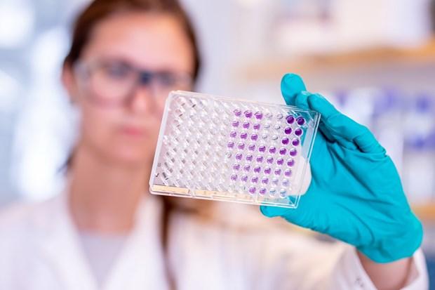 Vacxin phong COVID-19 cua AstraZeneca cho ket qua thu nghiem kha quan hinh anh 1