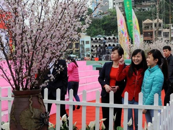 Khai mac Le hoi Hoa anh dao Ha Long nam 2014 hinh anh 1