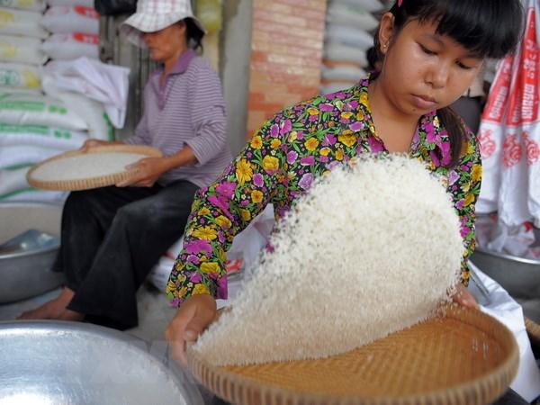 Campuchia-Thai Lan hop tac xay dung nha may xay xat gao hinh anh 1