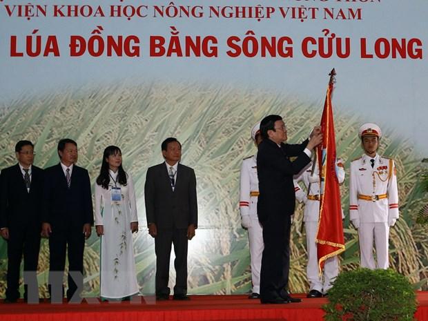 Vien Lua DBSCL don nhan Huan chuong Doc lap hang nhat hinh anh 1
