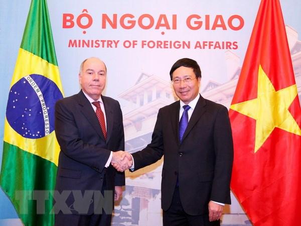 Brazil coi Viet Nam la doi tac quan trong tai khu vuc Dong Nam A hinh anh 1