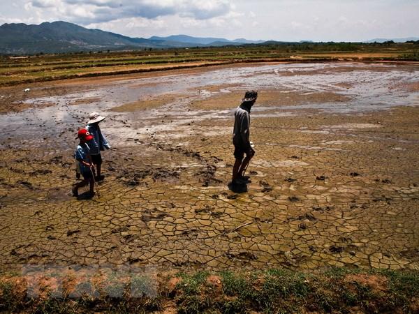 Viet Nam doi mat mot mua Dong am va El Nino keo dai ky luc hinh anh 1