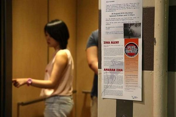 Singapore cong bo them 40 truong hop nhiem virus Zika trong nuoc hinh anh 1