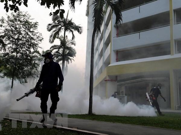 Them 15 truong hop nhiem virus Zika moi duoc phat hien o Singapore hinh anh 1