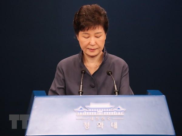 Tong thong Han Quoc Park Geun-hye chap nhan dieu tra neu can thiet hinh anh 1