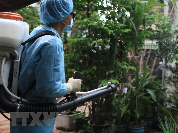 Thanh pho Ho Chi Minh hop khan ve dien bien dich Zika tren dia ban hinh anh 1