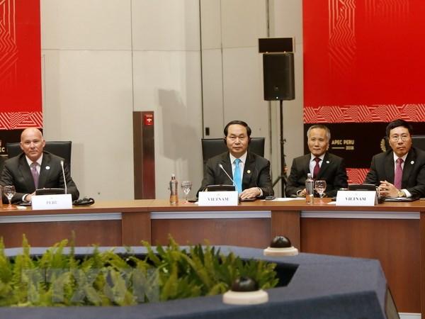 Bai phat bieu cua Chu tich nuoc Tran Dai Quang tai CEO Summit 2016 hinh anh 1