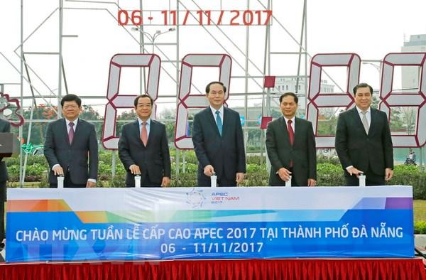 Chu tich nuoc kiem tra cong tac chuan bi Tuan le Cap cao APEC 2017 hinh anh 1