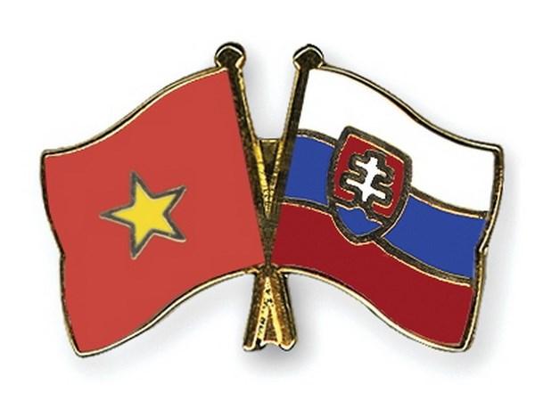 Dai hoi dai bieu toan quoc Hoi Huu nghi Viet Nam-Slovakia hinh anh 1