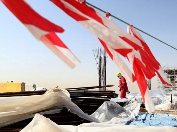 Qatar khang dinh cong tac chuan bi World Cup khong bi anh huong hinh anh 1
